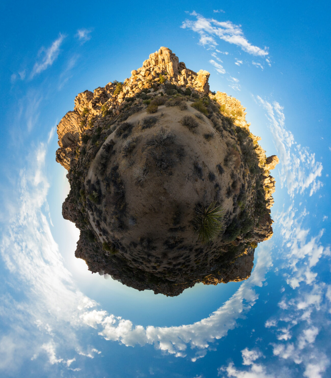 Joshua Tree tiny planet. Photo by Jim Newberry.